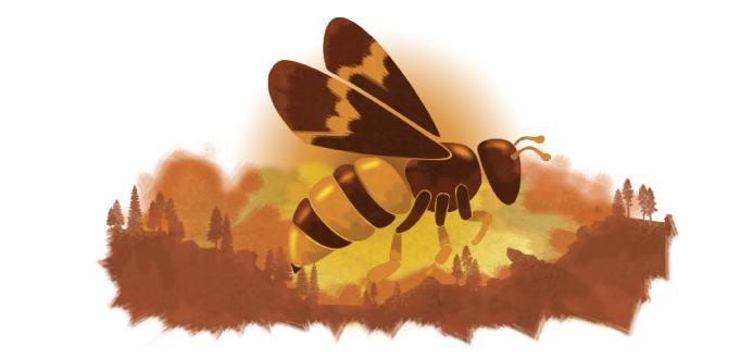 Humboldt Termite & Pest Control Bee